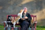 Great dog breeds for seniors