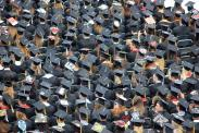 States with the highest number of college graduates living in poverty