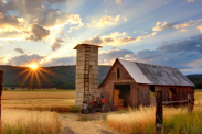 50 fascinating facts about farming in America