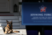 A history of presidential pets
